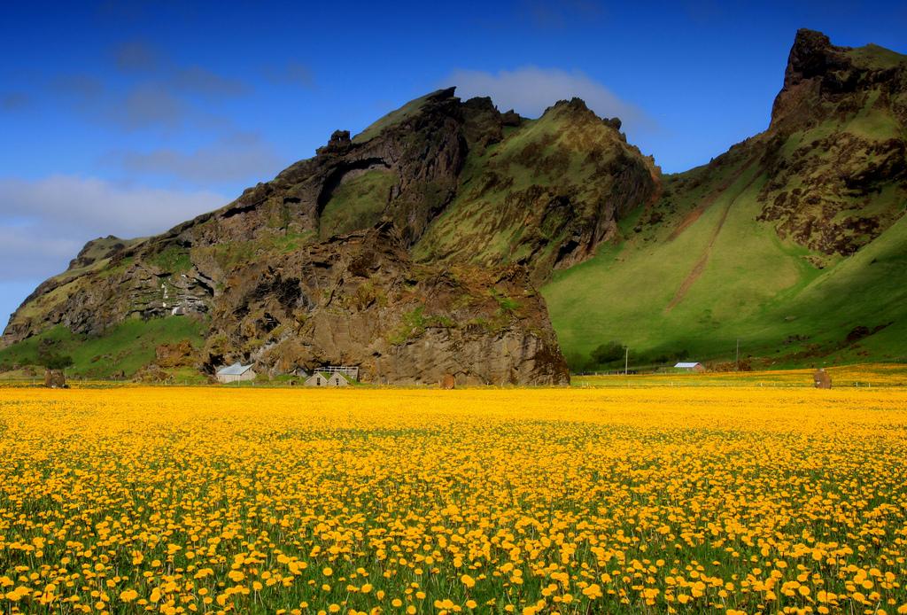 Suðurland bсландия