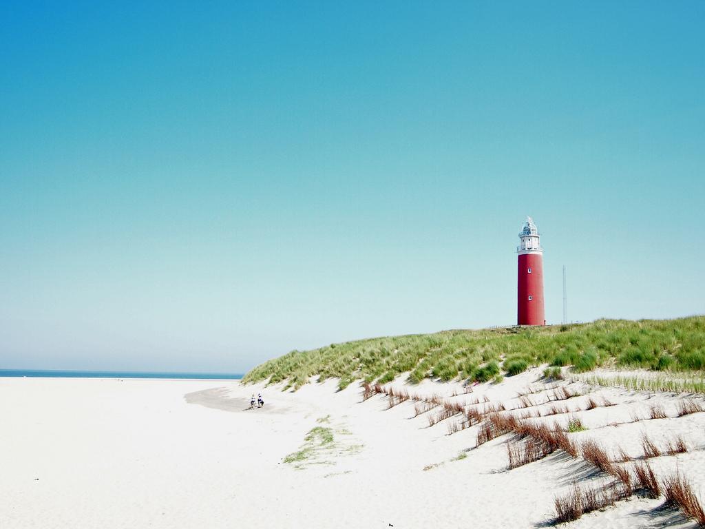 Texel фото