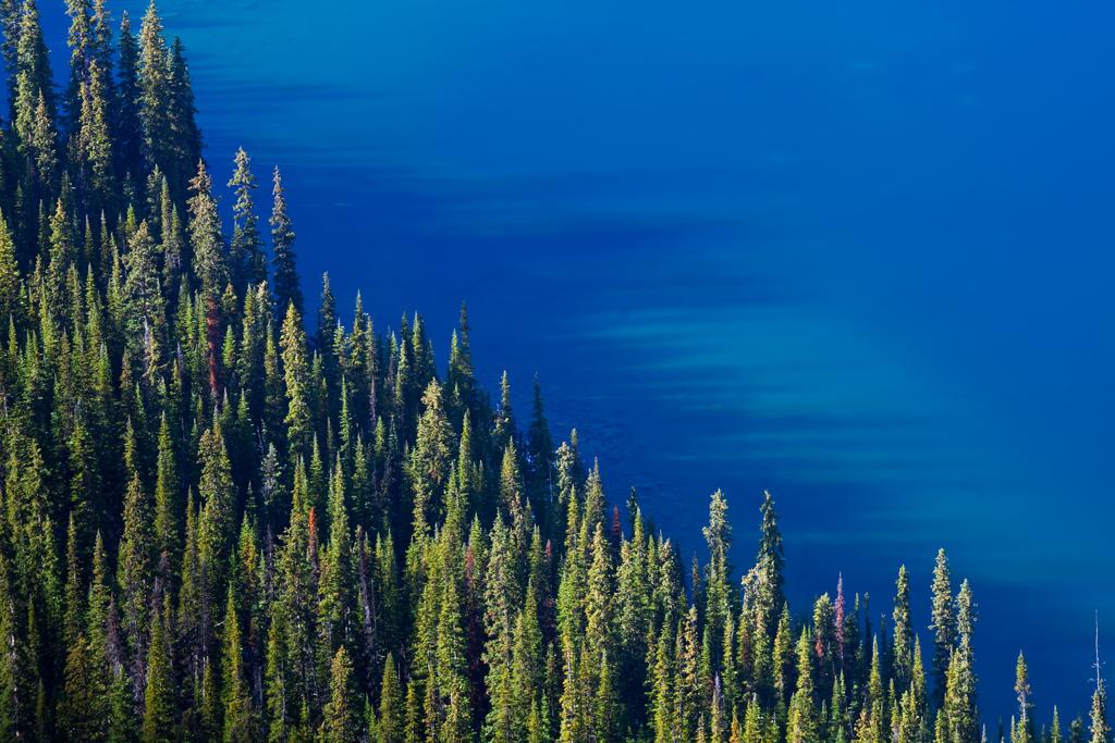 O'hara Lake фото