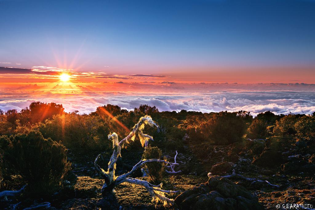 остров Reunion
